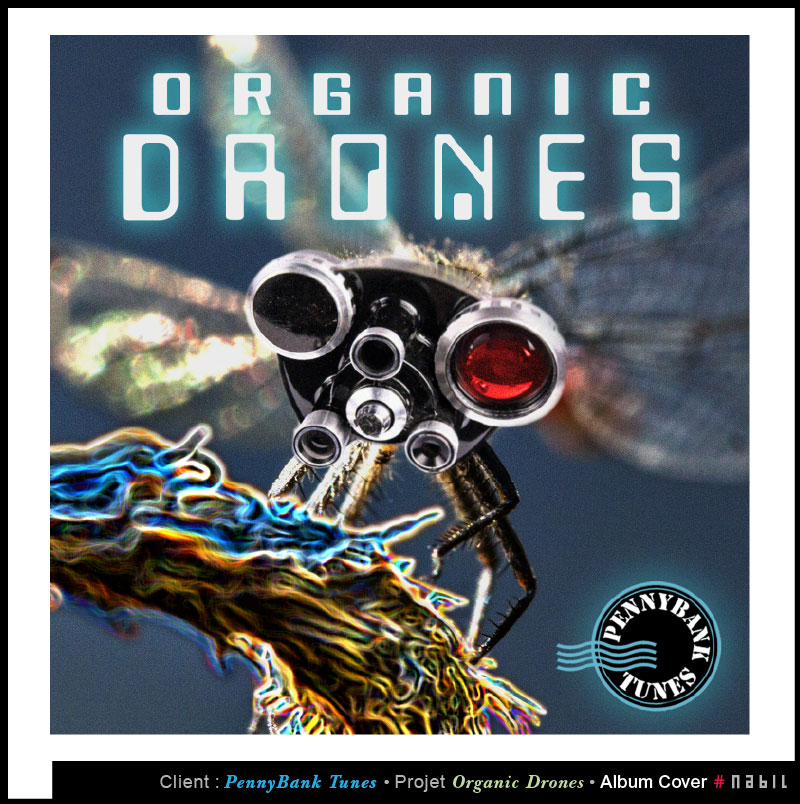 Conception CD audio – Organic Drones – PennyBank Tunes